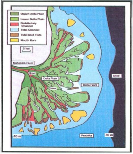 Morfologi Delta Mahakam secara keseluruhan (Modifikasi Allen & Chamber, 1998)
